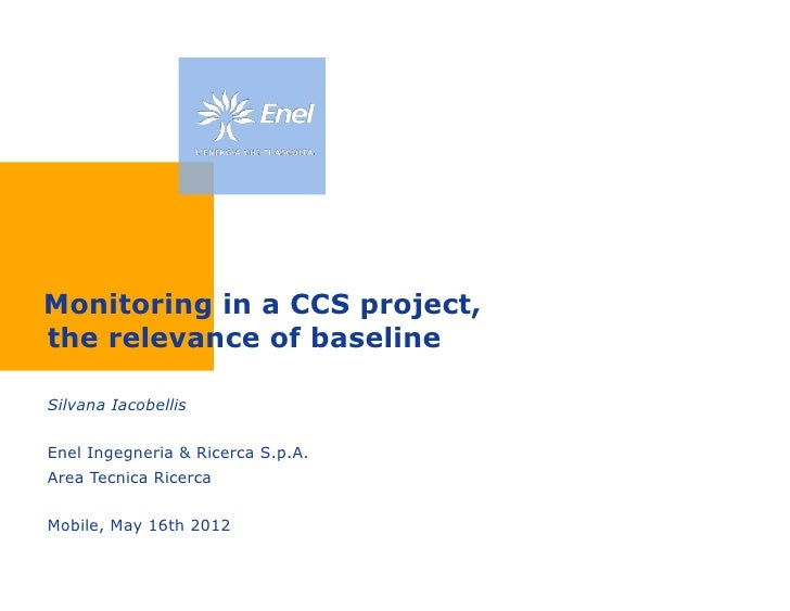 Monitoring in a CCS project, the relevance of baseline, Porto Tolle, Italy