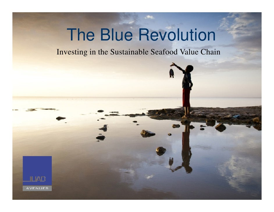 The Blue Revolution Investing in the Sustainable Seafood Value Chain