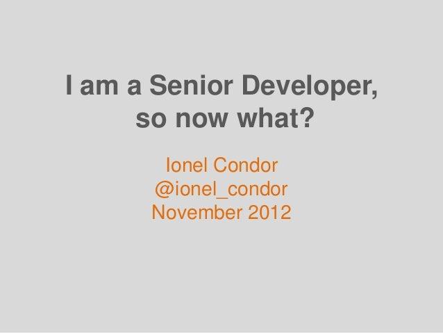 I am a Senior Developer, so now what?