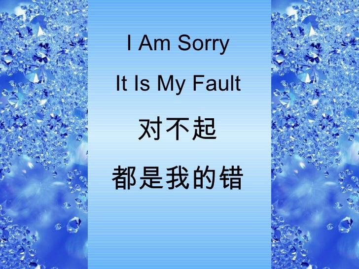 I Am Sorry It Is My Fault 对不起 都是我的错
