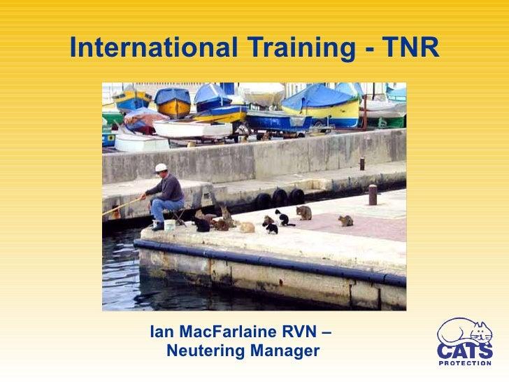 International Training - TNR <ul><li>Ian MacFarlaine RVN –  </li></ul><ul><li>Neutering Manager </li></ul>