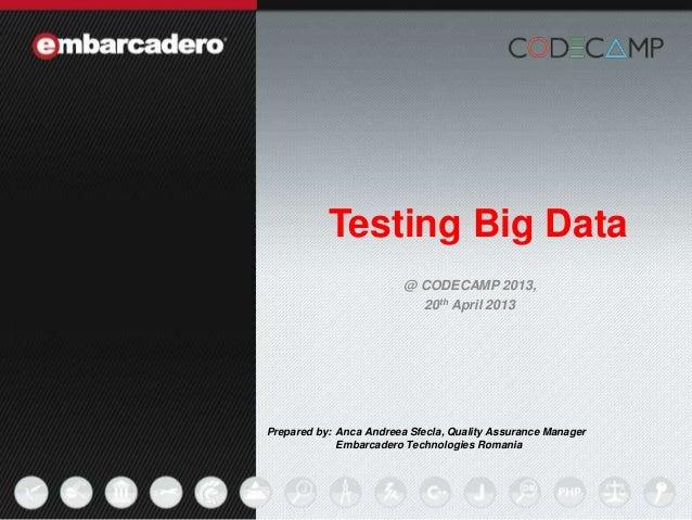 Iasi code camp 20 april 2013 testing big data-anca sfecla - embarcadero