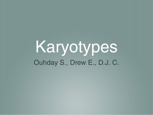 IB Bio Karyotypes