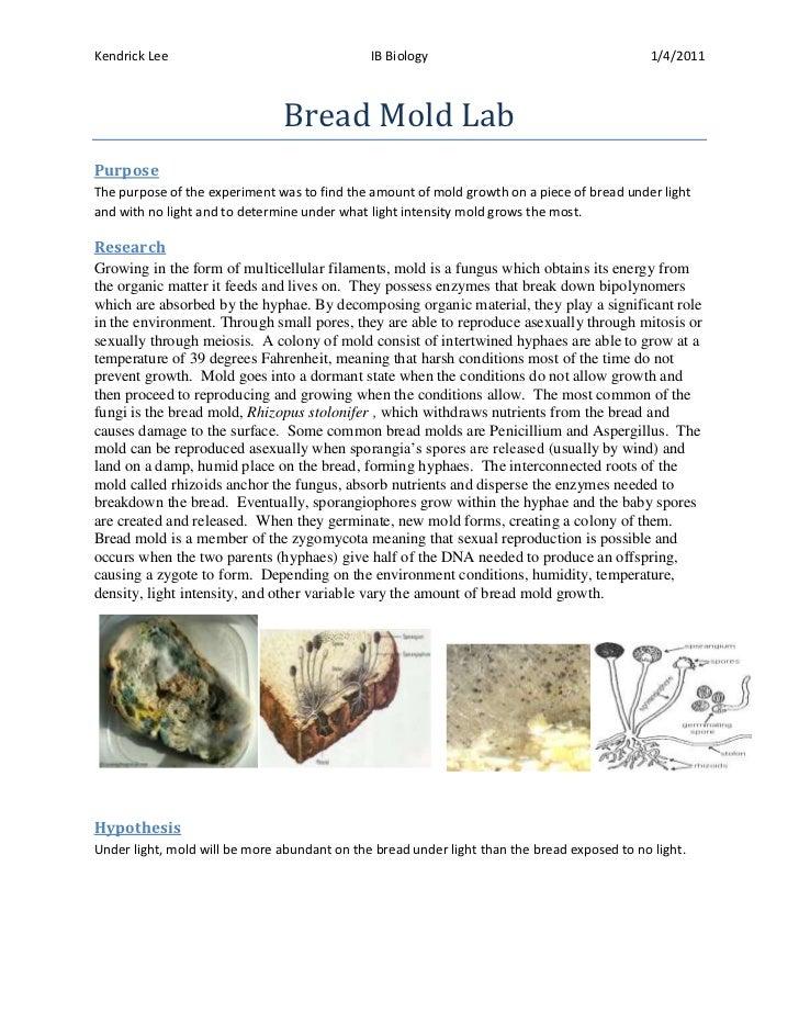 Kendrick Lee                                  IB Biology                                      1/4/2011                    ...