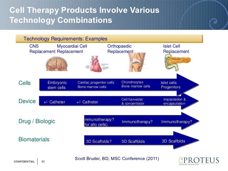 Ibc Cell Therapy Clinical