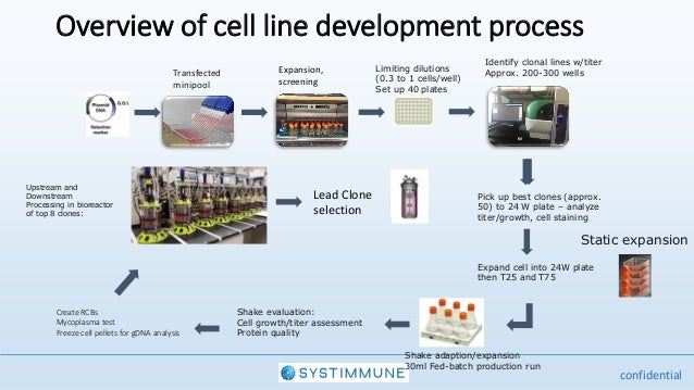 Presentation By Systimunne At The Cell Line Development Engineering Summit June 638 Cb Protein