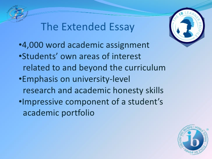 Ib essays