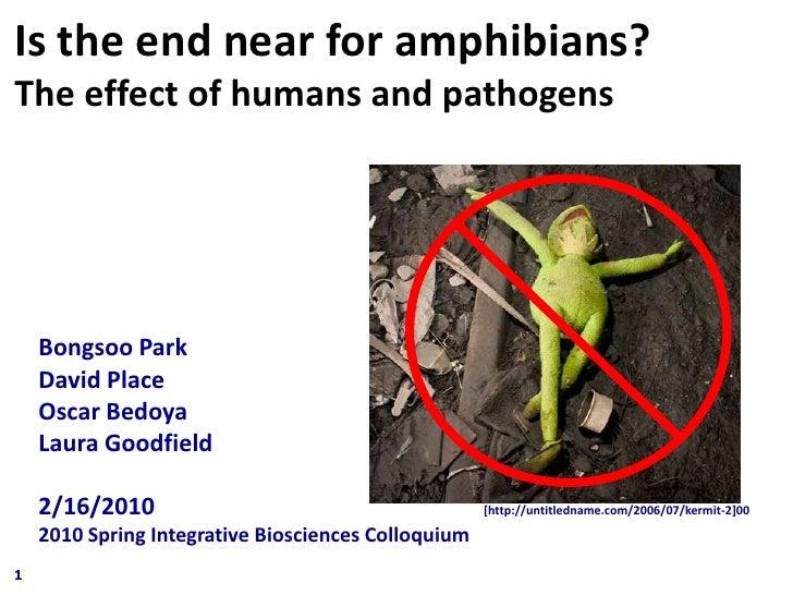 Colloquium Presentation 2010 Bongsoo