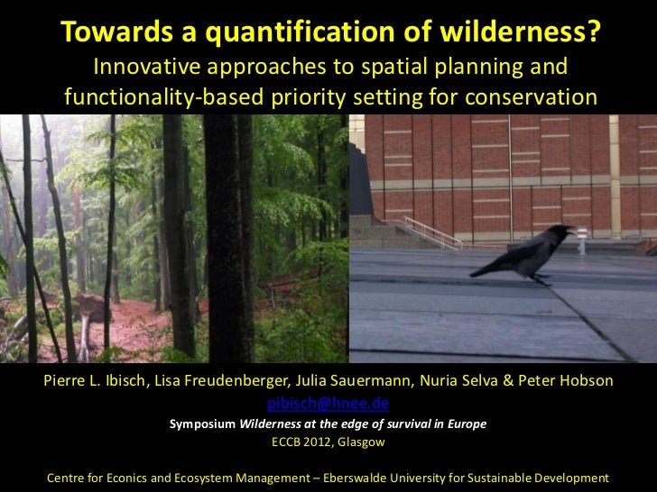 Towards a quantification of wilderness?     Innovative approaches to spatial planning and  functionality-based priority se...