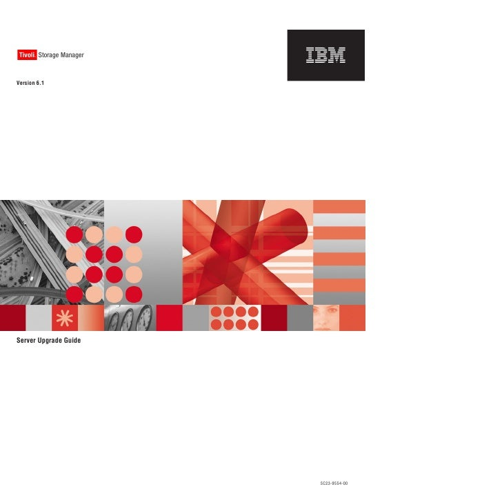 Ibm tivoli storage manager v6.1 server upgrade guide