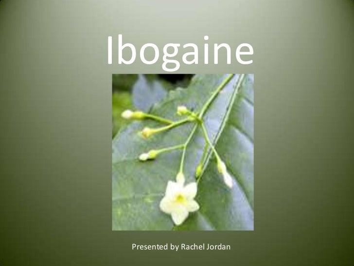 Ibogaine<br />Presented by Rachel Jordan<br />