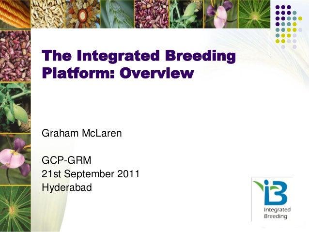 The Integrated BreedingPlatform: OverviewGraham McLarenGCP-GRM21st September 2011Hyderabad