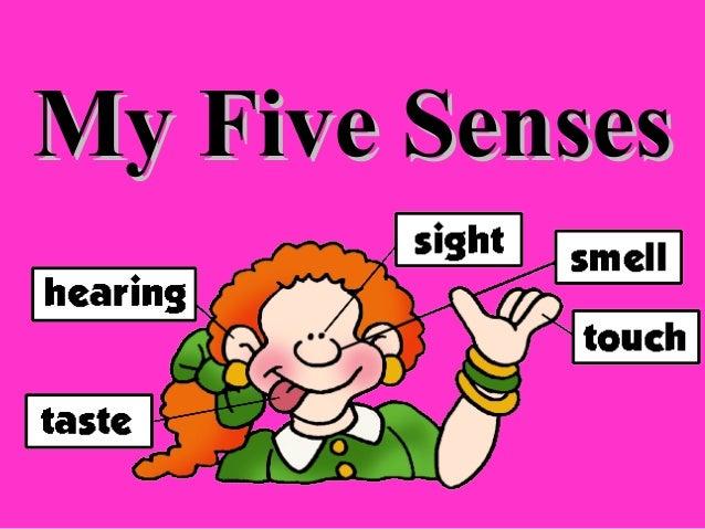 My Five SensesMy Five Senses