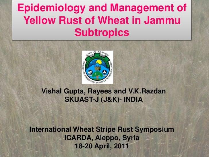 Epidemiology and Management of Yellow Rust of Wheat in Jammu Subtropics <br />Vishal Gupta, Rayees and V.K.Razdan<br />SKU...
