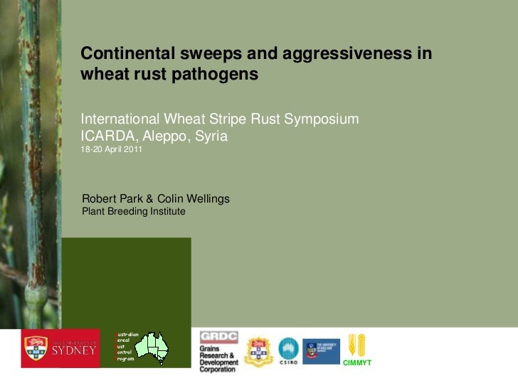 CIMMYT<br />Australian<br />Cereal<br />Rust<br />Control<br />Program<br />Continental sweeps and aggressiveness in wheat...