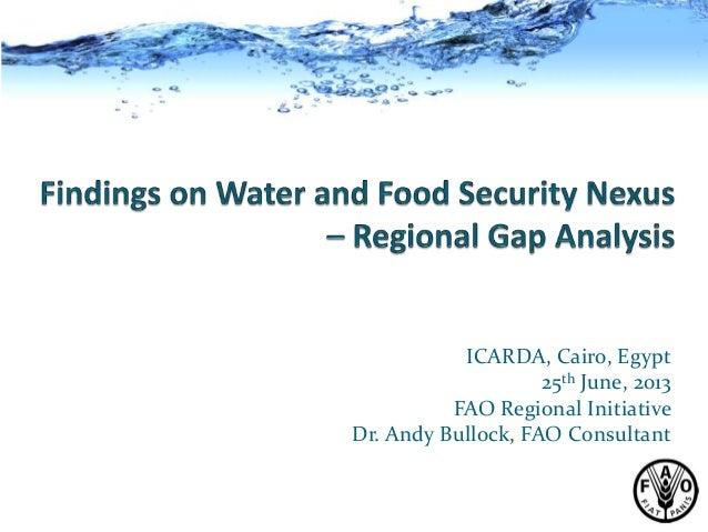 Expert ConsultationICARDA, Cairo, Egypt25th June, 2013FAO Regional InitiativeDr. Andy Bullock, FAO Consultant