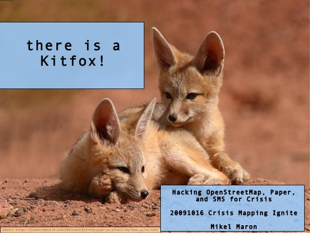 There is a Kitfox