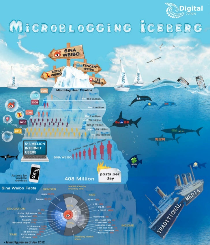 Chinese Microblog Infographic