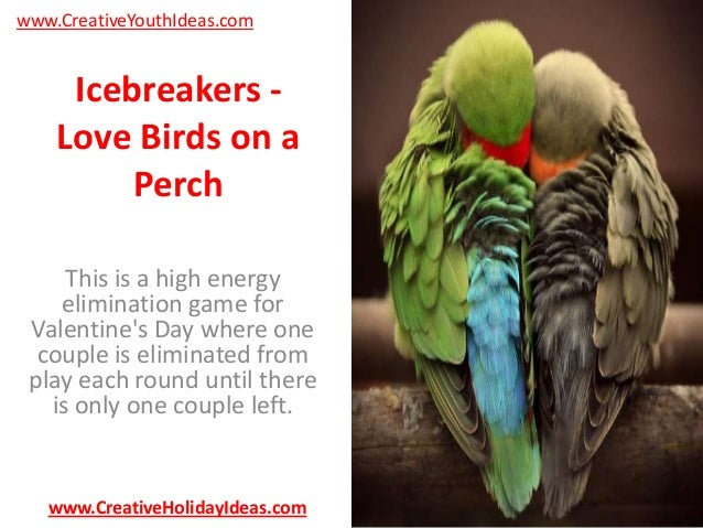 www.CreativeYouthIdeas.com  Icebreakers Love Birds on a Perch This is a high energy elimination game for Valentine's Day w...