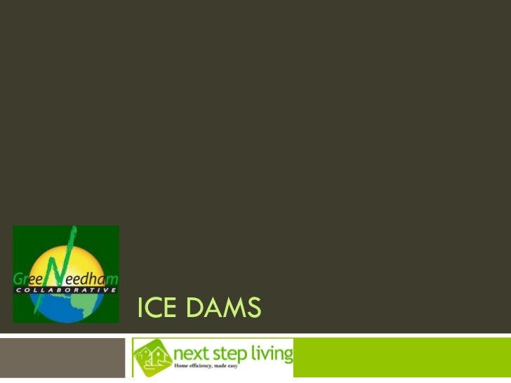 ICE DAMSNEXT STEP LIVING