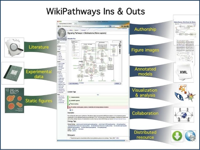 Introduction to WikiPathways