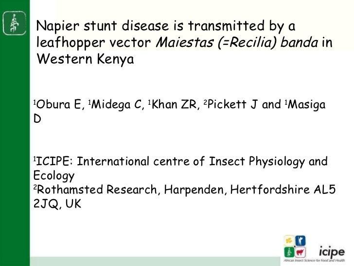 1 Obura E,  1 Midega C,  1 Khan ZR,  2 Pickett J and  1 Masiga D  1 ICIPE: International centre of Insect Physiology and E...