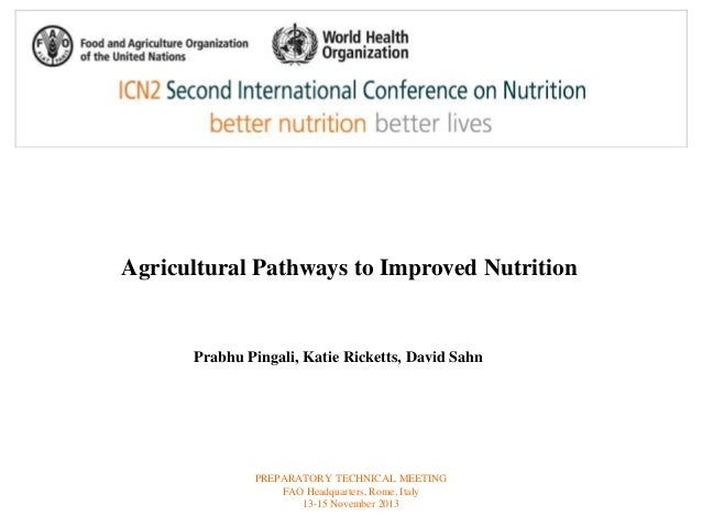 Agricultural Pathways to Improved Nutrition  Prabhu Pingali, Katie Ricketts, David Sahn  PREPARATORY TECHNICAL MEETING  FA...