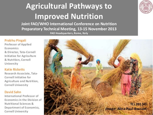 Agricultural Pathways to Improved Nutrition Joint FAO/WHO International Conference on Nutrition Preparatory Technical Meet...