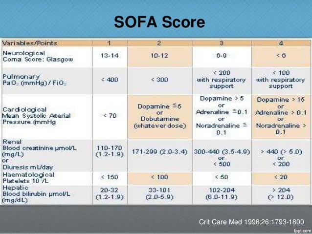 Sofa Score Icu; Smileydot us
