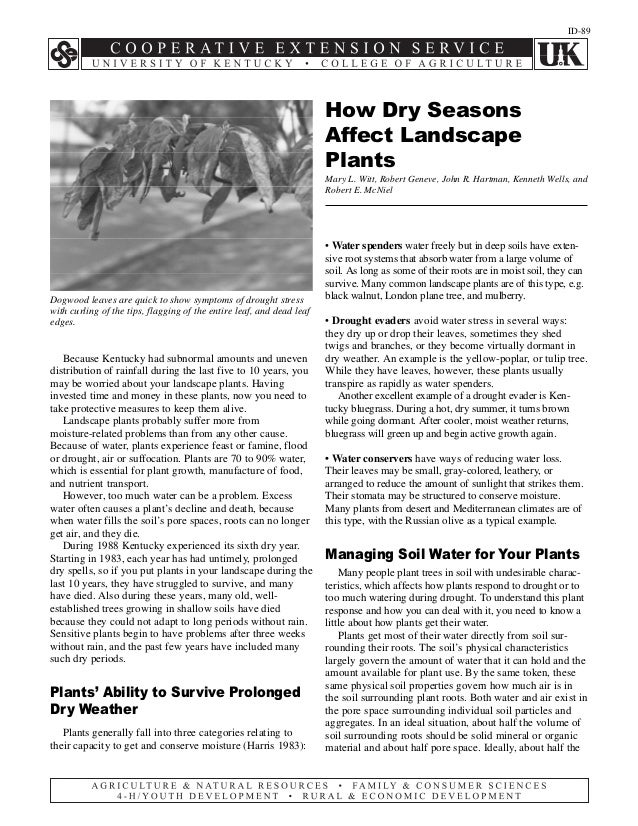 How Dry Seasons Affect Landscape Plants - University of Kentucky