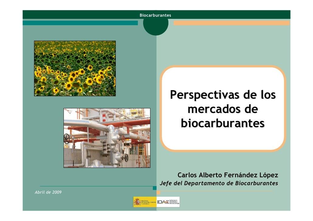 IDAE : Perspectivas sobre biocarburantes