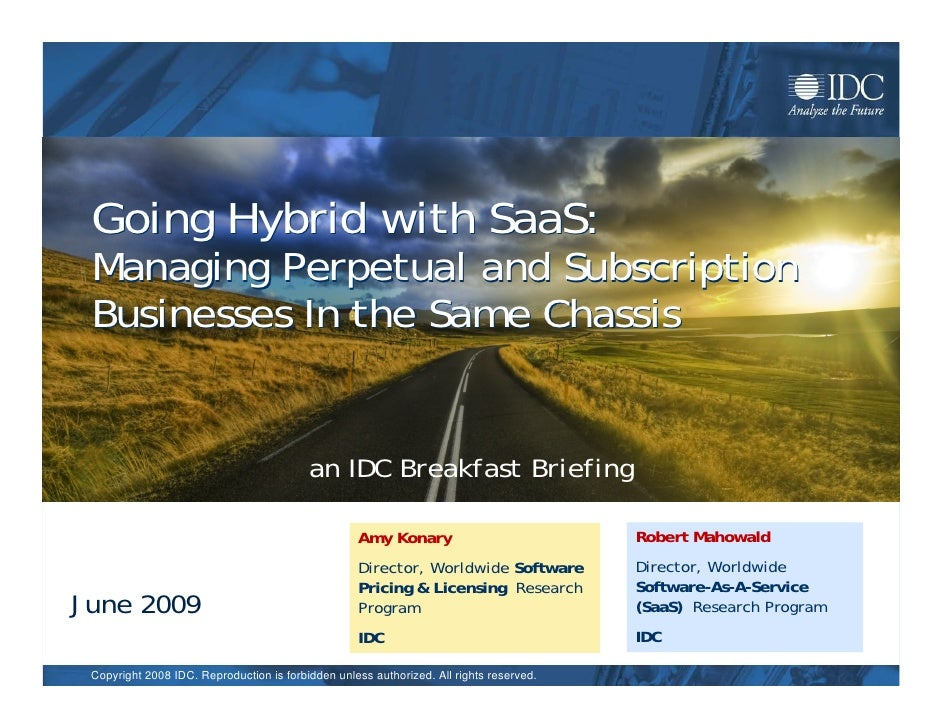 Idc Saa S Pricing Briefing 061709