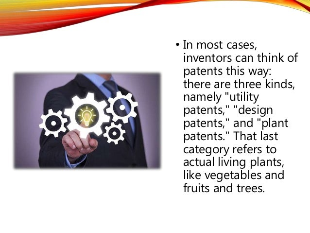 Idea Design pet product idea design and development 3
