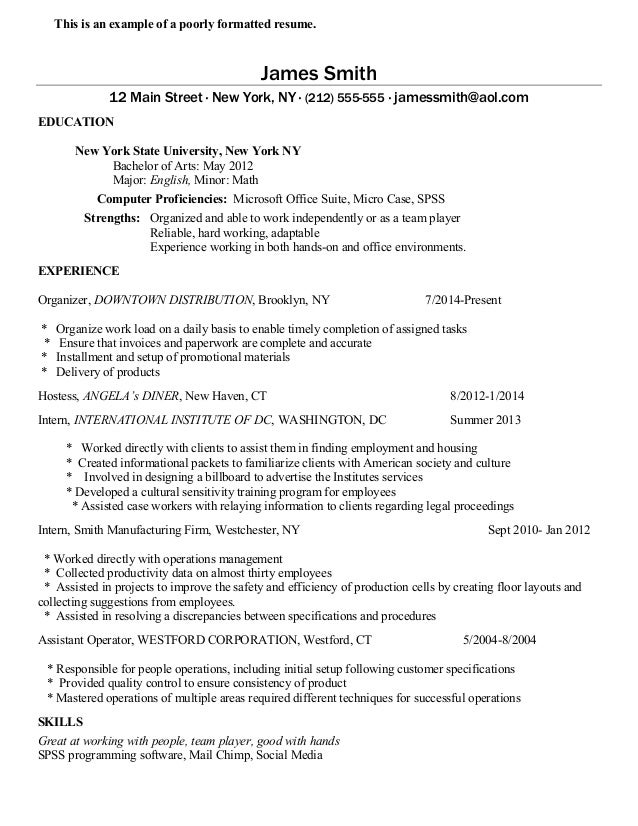 Great Examples Of Resumes Best Resume Writing Services In Nyc City Resume San  Diego Resume Writers Nyc