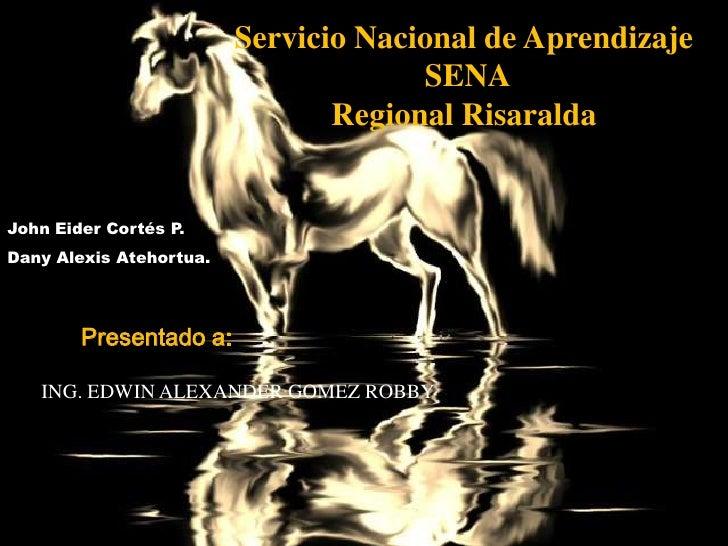Servicio Nacional de Aprendizaje                                       SENA                                 Regional Risar...