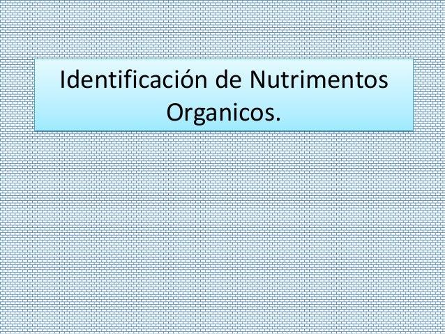 Identificación de NutrimentosOrganicos.