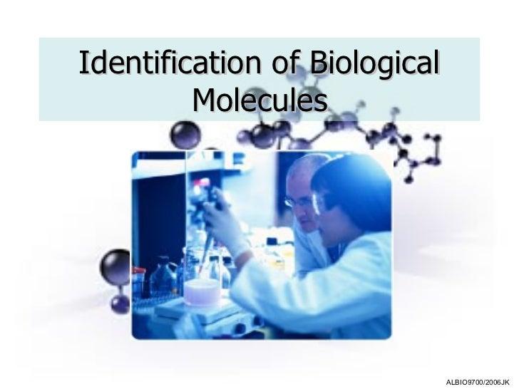 Identification of Biological Molecules
