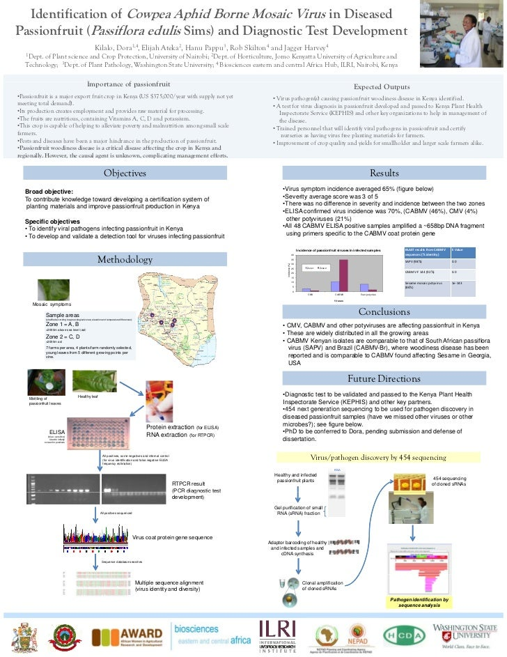 Identification of cowpea aphid borne mosaic virus in diseased passionfruit (Passiflora edulis Sims) and diagnostic test development