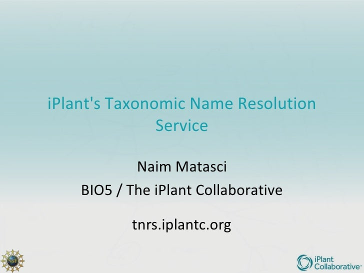 iPlant TNRS for digital collections - iDigBio Workshop