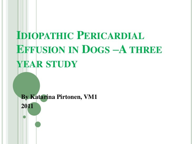 Idiopathic pericardial effusion in dogs –a three