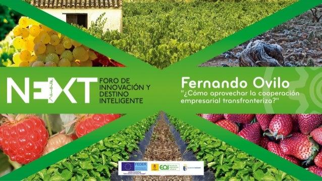 """""""Instrumentos financieros de la UE. La cooperación transfronteriza"""" FERNANDO OVILO DIRECTOR DE INNOVACIÓN DE"""