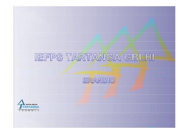 Iefps tartanga gblhi study visit2013