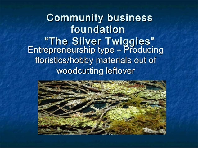 "Community business         foundation    ""The Silver Twiggies""Entrepreneurship type – Producing floristics/hobby materials..."