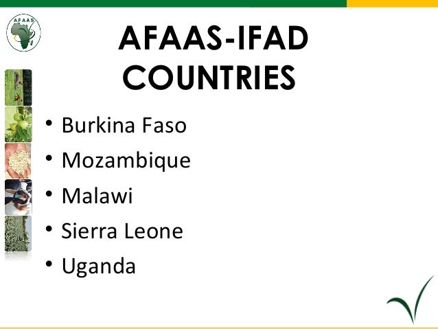 IFAD Country Fora supported countries:  Presentation at the Africa Wide Agricultural Extension Week August, 2013