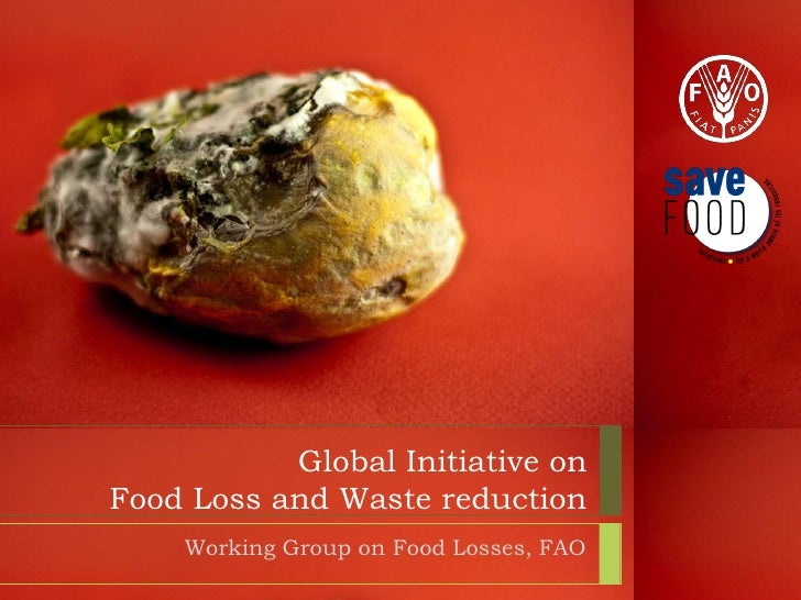 Global Initiative onFood Loss and Waste reduction    Working Group on Food Losses, FAO