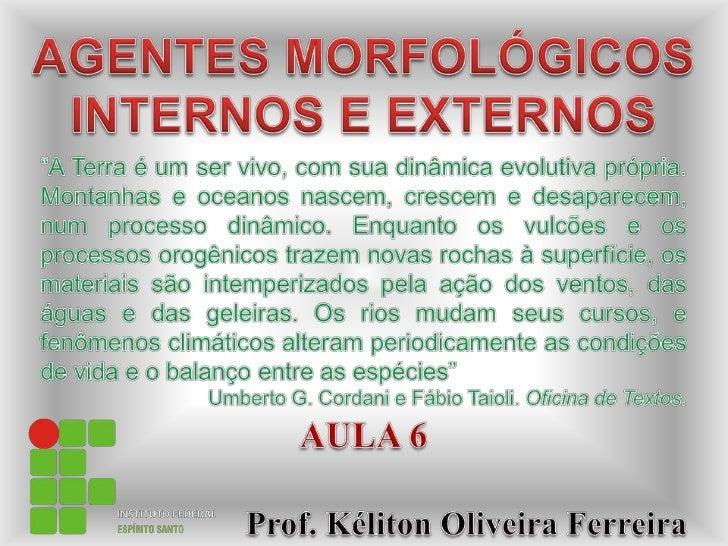 Ifes aula 6-agentes-morfofógicos_internos_e_externos