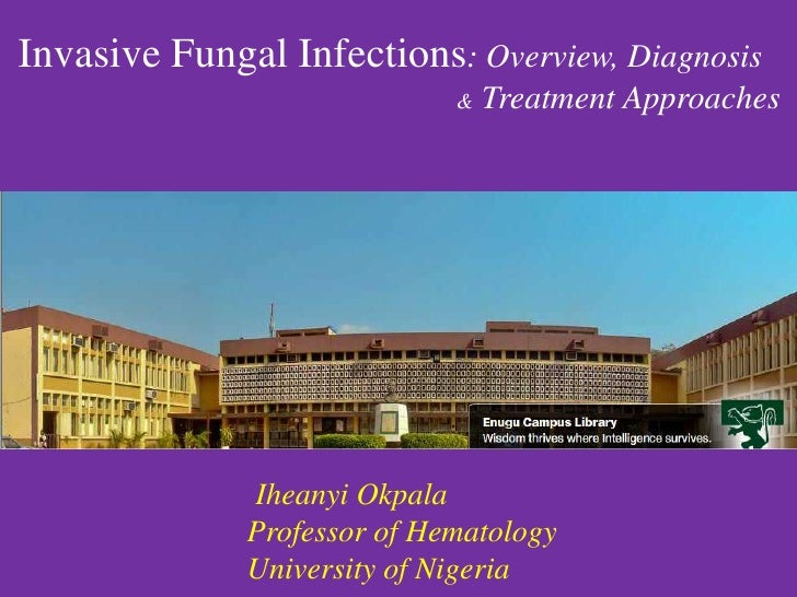 Invasive Fungal Infections: Overview, Diagnosis                             &   Treatment Approaches              Iheanyi ...
