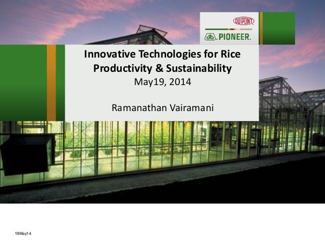IFPRI CSISA - Technology Pipelines, Products and Policies in the Seed Sector