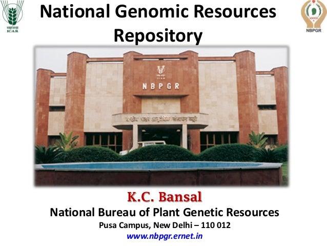 K.C. Bansal National Bureau of Plant Genetic Resources Pusa Campus, New Delhi – 110 012 www.nbpgr.ernet.in National Genomi...