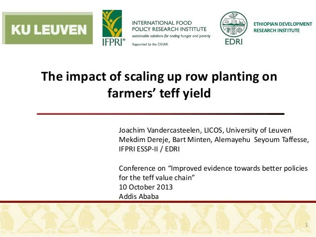 ETHIOPIAN DEVELOPMENT RESEARCH INSTITUTE The impact of scaling up row planting on farmers' teff yield Joachim Vandercastee...